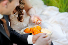 Young bride and groom eating tangerines Stock Photography