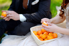 Young bride and groom eating tangerines Stock Images
