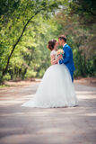 Young bride and groom embracing against the backdrop of the forest the road Stock Photos