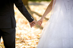 Young bride and groom holding hands at park Stock Photography