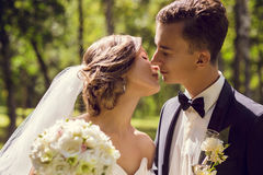 Young bride and groom kissing Royalty Free Stock Photography