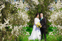 Young bride and groom in a lush garden in the spring Royalty Free Stock Photography