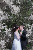 Young bride and groom in a lush garden in the spring Stock Images