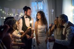 A young bride and groom with other guests dancing and singing on a wedding reception. A young cheerful bride and groom with other guests dancing and singing on royalty free stock photo