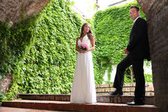 Young bride and groom Stock Images