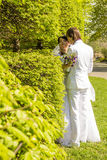 Young bride and groom posing in the park Stock Image