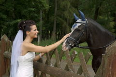 Young bride with horse Royalty Free Stock Photography