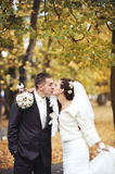 Young bride kissing her groom. Royalty Free Stock Image
