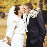 Young bride kissing her groom. Stock Photography