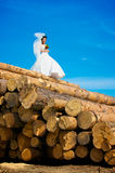 Young bride on the log Stock Image