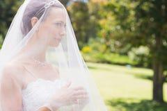 Young bride looking away through veil in garden Royalty Free Stock Image