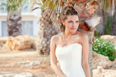 Young bride near palm-tree Royalty Free Stock Images