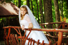 Young bride in park Stock Image