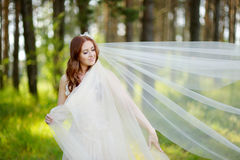 Young bride posing in beautiful summer park Stock Images