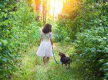 Young bride walking with dog Stock Image