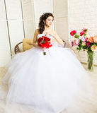 Young bride in wedding dress, studio shot Royalty Free Stock Image