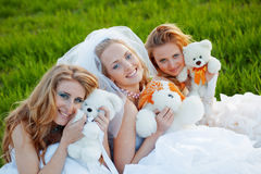 Young brides Stock Photography