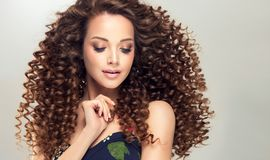 Young, brown haired woman with dense,elastic curls in a hairstyle. Gentle smile on the face of flawless young girl, vivid makeup and dense, curly hairstyle royalty free stock photo
