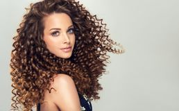 Young, brown haired woman with dense, spring-like,elastic curls in a hairstyle. Dense, spring-like,elastic curls in a hairstyle of young, pretty model. Stylish stock images