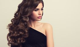 Brown haired woman with voluminous, shiny and curly hairstyle.Frizzy hair. Young brown haired woman with voluminous, shiny and wavy hair . Beautiful model with stock image