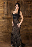 Young brunet model. Beautiful young model in brown dress Royalty Free Stock Photos