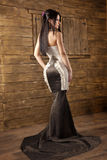Young brunete model. Young brunette model in a sexy dress Royalty Free Stock Images