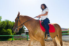 Young brunette on a brown-blond horse in the riding club Stock Photos