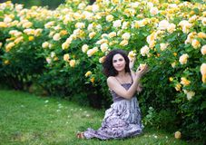 Young brunette Caucasian woman with curly hair sitting on green grass near yellow roses Bush in a garden, looking straight to the. Camera stock photos
