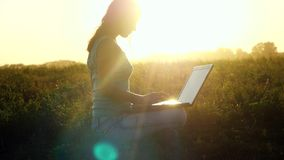 Young brunette caucasian woman typing on a laptop outdoors at beautiful sunset sitting on the grass with amazing lense stock footage