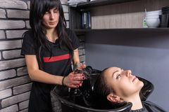 Young brunette client having hair washed and soaped by female st Royalty Free Stock Photos