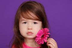 Young brunette dolly lady girl stylish dressed in pink shirt with flowers smiling posing sitting in studio with pout lips and pink. Cheeks Royalty Free Stock Photography