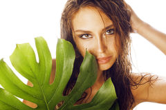 Young brunette elegant woman with green leaf Stock Images