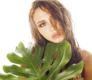 Young brunette elegant woman with green leaf Stock Photography