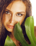 Young brunette elegant woman with green leaf  on white close up asian face Stock Photo