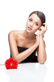 Young brunette female with gerbrera flower. Vertical studio beauty portrait of young attractive brown-eyed brunette caucasian female with red gerbera flower on Stock Photography