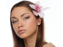 Young brunette girl stock photography