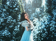 Young brunette girl is in blue vintage dress Stock Photography