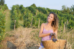 Young brunette girl in grape harvest with big wicker basket for Stock Photos