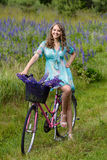A young brunette girl lupine meadow. The girl with a bouquet of lupine and bike sunny summer day lupine field Royalty Free Stock Photography