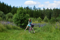 A young brunette girl lupine meadow. The girl with a bouquet of lupine and bike sunny summer day lupine field Stock Image