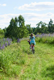 A young brunette girl lupine meadow. The girl with a bouquet of lupine and bike sunny summer day lupine field Royalty Free Stock Image