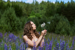 A young brunette girl lupine meadow. Girl fun playing lupine meadow Royalty Free Stock Photos