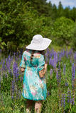 A young brunette girl lupine meadow. The girl with a white hat lupine field on a sunny summer day Royalty Free Stock Photos