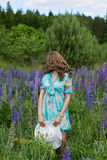 A young brunette girl lupine meadow. The girl with a white hat lupine field on a sunny summer day Royalty Free Stock Images