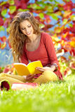 Young brunette girl reading a book. Portrait of beautiful young brunette girl reading a book in the park at fall Stock Photos