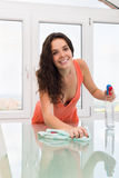 Young brunette houswife cleaning  furniture Stock Photography