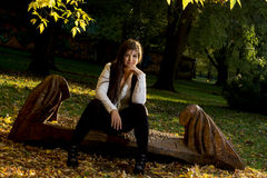 Young brunette posing in autumn park Royalty Free Stock Photography