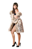Young brunette posing in leopard coat royalty free stock images