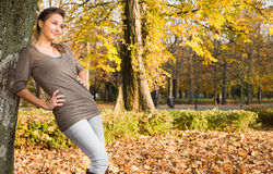 Young brunette posing in the park at autumn. Portrait of young beautiful brunette posing in the park at autumn Stock Photos