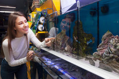 Young brunette selecting tropical fish in aquarium tank Royalty Free Stock Photos